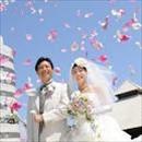 社会人サークル 横浜 婚活