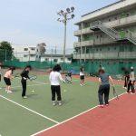 社会人サークル テニス 横浜